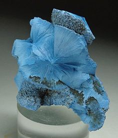Shattuckite - This specimen of shattuckite displays the classic radial habit it is known for. Location:	Tantara Mine, Katanga Province, Dem. Rep. of the Congo.