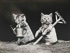 Resultado de imagen para postales antiguas niños y niñas con gatos