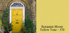 Colorful Designer Front Doors and Paint Samples - Simplified Bee