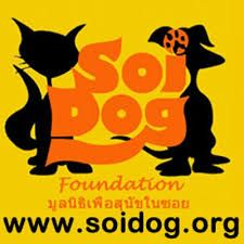 Want to receive the latest news straight to your inbox from Soi Dog Foundation? Sign up to receive our newsletter and get updates on shelter news, adoptions, events, the campaign against the illegal dog meat trade, and more. http://www.soidog.org/en/newsletter-sign-up/