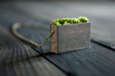Natural Moss Pendant Necklace by MrLentz on Etsy, $34.00