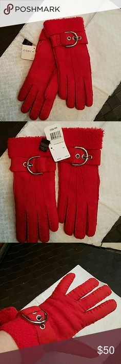 NWT COACH Red Shearling Gloves sz8 New with tag, never worn COACH 100% UK Shearling made in Italy. They are a size 8 but in my opinion runs small so it's a snug 8. It looks like what might be pen marks in a couple of places on the glove. The interior tagged is detached but included with the gloves. Silver nickel Buckle design in perfect condition. Comes wrapped in signature Coach tissue paper. Msrp $198 Coach Jackets & Coats
