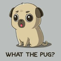 What the pug?