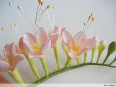 Pink freesia flowers and buds. - Fragrance trends for Spring - Summer 2016