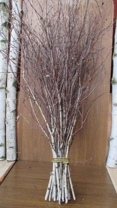 extra long birch twigsbirch twigsbirch tree by FloristsupplyGoods
