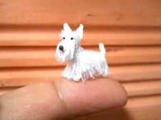 Hey, I found this really awesome Etsy listing at https://www.etsy.com/listing/265363047/white-scottish-terrier-tiny-crochet