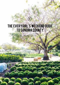 The Everygirl's Weekend Guide to Sonoma County, CA #theeverygirl