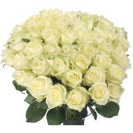 10-100 lange witte rozen  Vanaf: €19,50
