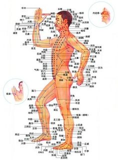 Acupressure points on human body - ImproveeyesightHQ.com