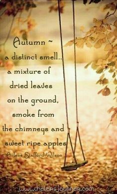 Autumn is so amazing. The smell of Autumn for me is the fallen leaves on the ground, and the smell of the neighbors burning wood. It's such a lovely, comforting smell, though now I have moved and it smells nothing like it should. Mabon, Samhain, Autumn Cozy, Autumn Fall, Lovely Smile, Seasons Of The Year, Happy Fall Y'all, Fall Pictures, Gif Pictures
