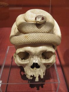 Clay Club: Skull and Snake