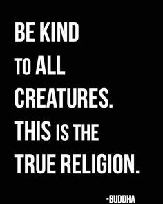 399 vind-ik-leuks, 2 reacties - esosoul (@eso.soul) op Instagram: 'True Religion. ☮️ ☮️ ☮️ follow @ eso.soul . . . #esosoul #buddha #buddhaquote #buddhaquotes…'