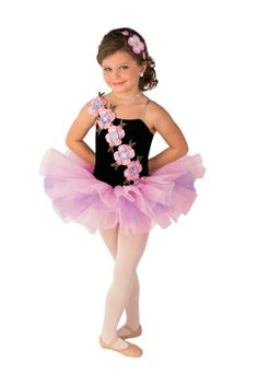 Costume Gallery  Ballet Girls Costume Details eb48c83b624