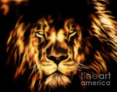 This fractal image of a male lion was created by Tracey Lee Everington using Photoshop and a fractal program. Fractal Images, Fractal Art, Fractals, Male Lion, Art Pictures, Art Pics, Close Up, Fine Art America, Vibrant Colors