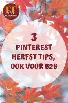 3 Pinterest herfst tips, ook voor B2B | EF Office Management Auto Entrepreneur, Competitor Analysis, Back To School, Office Management, Infographic, Marketing, Teamwork, Tips, Blog