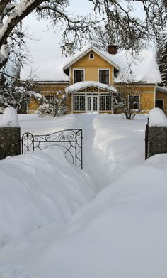 Yes, I want snow like this!!!