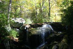 Ramsey Cascades Trail, Great Smoky Mountain National Park, TN Ramsey Cascades, Smoky Mountain National Park, Great Smoky Mountains, Trail, National Parks, Smoky Mountain, State Parks