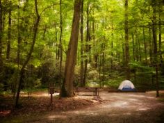 Lots of camping ideas - hiking, cooking, clean-campsite, campsite etiquette