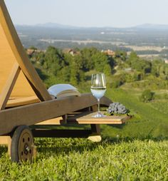 Enjoy a glass of white wine, read a book and enjoy the vinyards around you - that's the Austrian way of relaxing #austriantime