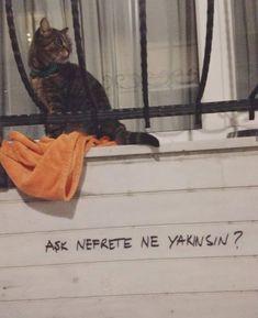 New post on senden-kalanlarimla-yalnizim Tumblr Boy, Cold Night, Girl Photo Poses, Romantic Love Quotes, Hug Me, Galaxy Wallpaper, Cool Words, Quotations, Graffiti