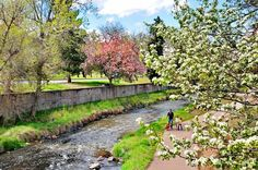 Spring time in Denver!