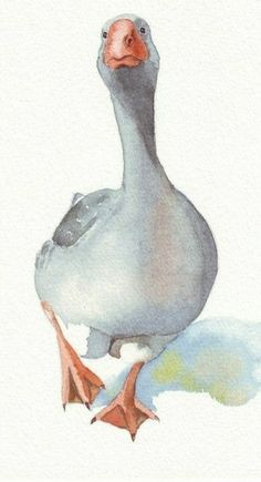Aquarel goose animal The post Aquarel goose animal appeared first on Kunst und Design. Watercolor Paintings Of Animals, Watercolor Pictures, Easy Watercolor, Animal Paintings, Animal Drawings, Goose Drawing, Crayons Pastel, Photo Animaliere, Watercolor Projects