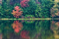 Ed Heaton nature photography