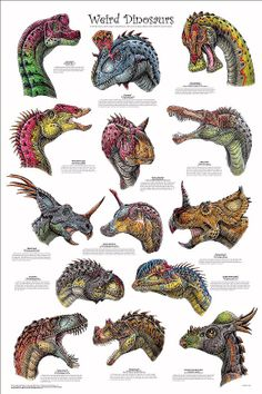 Dibujo de color para imprimir : Animales - Dinosaurios numéro 418651