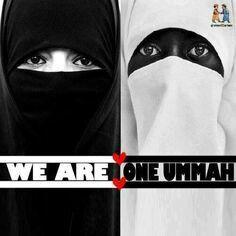 WE ARE ONE UMMAH!!   ~Amatullah