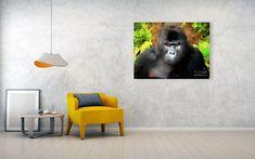 Gorilla portrait Canvas Print / Canvas Art by Gyula Gvardian Printing Companies, Got Print, Stretched Canvas Prints, Tag Art, Canvas Material, Wooden Frames, Fine Art America, Giclee Print, Canvas Art