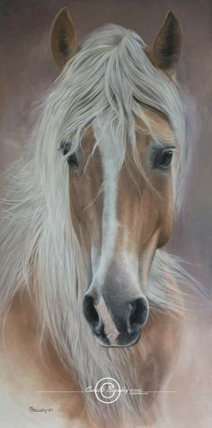 Exciting Learn To Draw Animals Ideas. Exquisite Learn To Draw Animals Ideas. Most Beautiful Horses, All The Pretty Horses, Animals Beautiful, Horse Photos, Horse Pictures, Horse Drawings, Animal Drawings, Horse Artwork, Majestic Horse