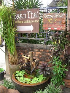 Baan Thai Cooking School - Thai cooking classes in Chiang Mai, Thailand - Fantastic stopover when travelling to Koh Samui Thai Cooking Class, Cooking Classes, Cooking Kale, Cooking School, Cooking Light, Samui Thailand, Koh Samui, Thailand Adventure, Thailand Travel
