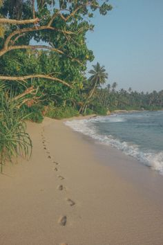 Endless Sri Lankan Beaches