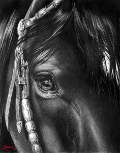 the Soul of a Horse Painting  - the Soul of a Horse Fine Art Print by Jill Westbrook