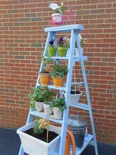 Ladder Herb Garden. Color: Valspar Encounter Satin spray paint. @valsparpaint