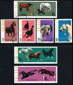 Poland 1191-1197 Stamps Horses Stamps EU PL 1191to1197-1, $2.95 Polish Horse Breeding at Blue Moon Philatelic Stamp Store (http://www.bmastamps2.com/stamps/europe/poland/poland-1191-1197-stamps-horses-eu-pl-1191to1197-1/)