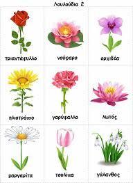 τα λουλουδια στο νηπιαγωγειο - Google Search