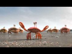 Teamwork.  How a group can accomplish more than working alone.    Go to this advertising site to see 4 cute animations: crabs, penguins, fireflies, & ants who work together.