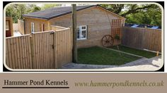 For more info only log on: http://www.hammerpondkennels.co.uk/