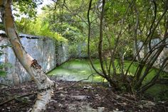 Abandoned Pool Located in: London Ontario Abandoned Places, Ontario, Places Ive Been, Photo Galleries, Waterfall, Sad, Lost, Earth, Explore