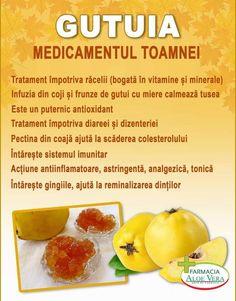 Eat Smart, Dory, Metabolism, Cantaloupe, Health Fitness, Healthy Recipes, Fruit, Suho, Medicine