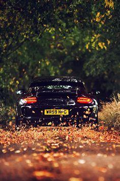 A Porsche in fall