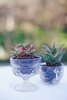 love the idea of potted plants in clear glass!