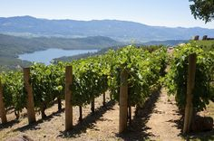 Wine Country: Sonoma / Napa Valley: You don't need to travel abroad for a taste of the Mediterranean. Get the gals together and get your vino on at well-known wineries such as Napa Cellars, Sutter Home and Robert Mondavi. Or, venture off the beaten path and bring some wine along for a bike or nature hike!