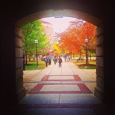 Another beautiful fall day here in Ann Arbor.