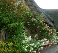 """Dreadful weather all day today so just took a very short drive out to Slipton and spotted this wonderful cottage. A real """"roses round the door"""" cottage. English Cottage Style, English House, English Cottages, Storybook Cottage, Cottage Garden Plants, Romantic Cottage, Photos Voyages, Rose Cottage, Cottage Design"""