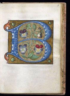 from Alphabet Book- The Art Walters Museum Medieval Manuscript, Medieval Art, Medieval Books, Illuminated Letters, Illuminated Manuscript, Illustrations, Illustration Art, Zentangle, Book Of Kells