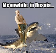 Vladimir Putin proves he has a good sense of humor by telling some funny jokes. Who knew Vladimir Putin was so funny and that Russia is pretty much like one . Meanwhile In Russia, Jw Humor, Funny Jokes, Hilarious, Funny Gifs, Memes Estúpidos, Russian Memes, Funny Russian, Russian Man