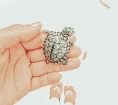 not my pin, just editted it! Cute Creatures, Beautiful Creatures, Sea Creatures, Small Turtles, Pretty Wallpapers, Cute Baby Animals, Fur Babies, Vsco, Summer Vibes