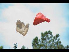PLASTIC BAG | FUTURESTATES | ITVS - YouTube